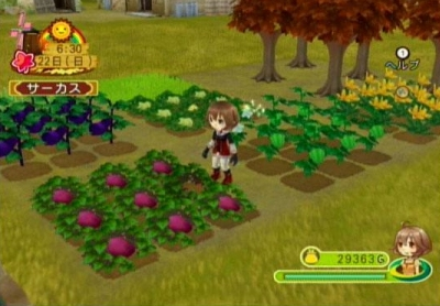 Game Harvest Moon Ps2